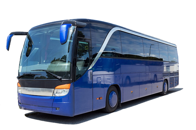coach-3206326_640.png